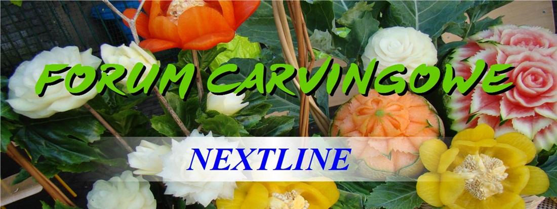 Forum o carvingu NEXTLINE